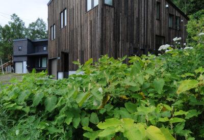 ART gallery&hotel 「e-kar-kar」の画像
