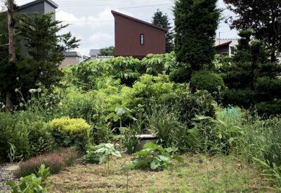 後方羊蹄山と庭を楽しむ暮らし 「 クワクスノスミカ 」